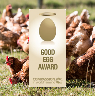 The Good Egg Award certificate